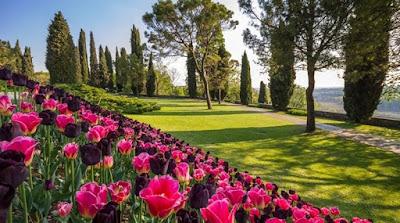Parco Giardino Sigurta' - Valeggio sul Mincio - Verona - Luoghi da vedere in Italia