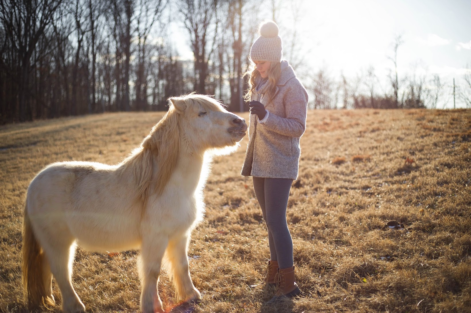 White Miniature Horse and Woman
