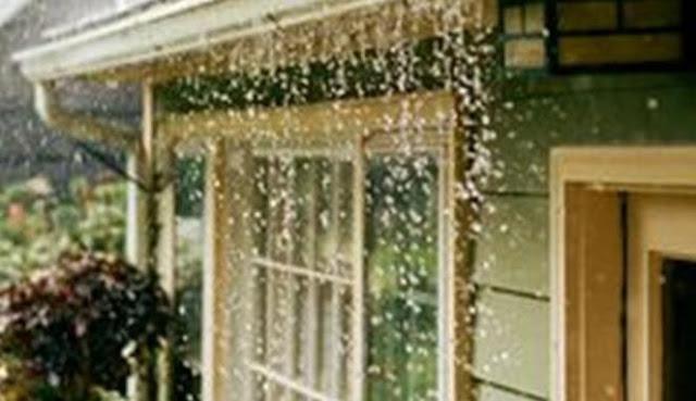 Panduan Mengatasi Masalah Rumah Setelah Musim Hujan