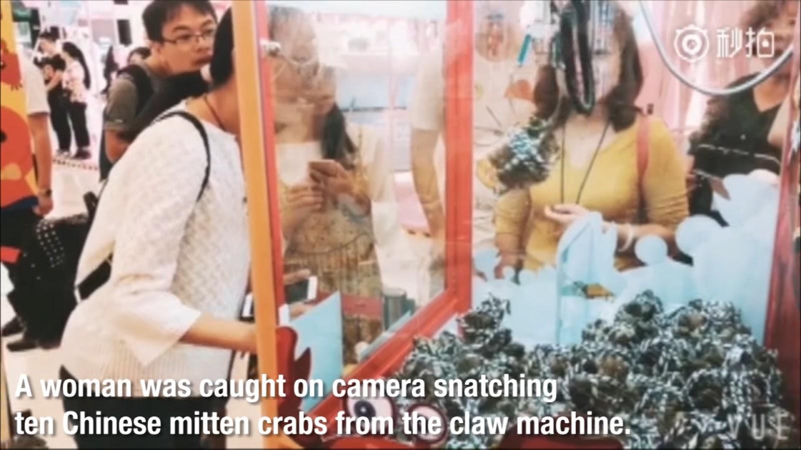 Grabbing ingredients for dinner at arcade shops.