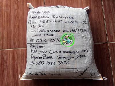 Benih pesanan  BAMBANG SUNYOTO Nganjuk, Jatim.  (Setelah Packing)