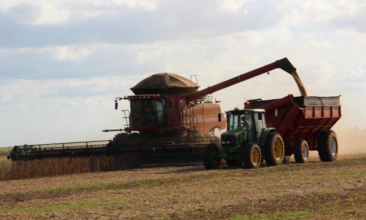 Agricultura gerou R$ 27,5 bilhões para a Bahia em 2020, melhor resultado em 26 anos