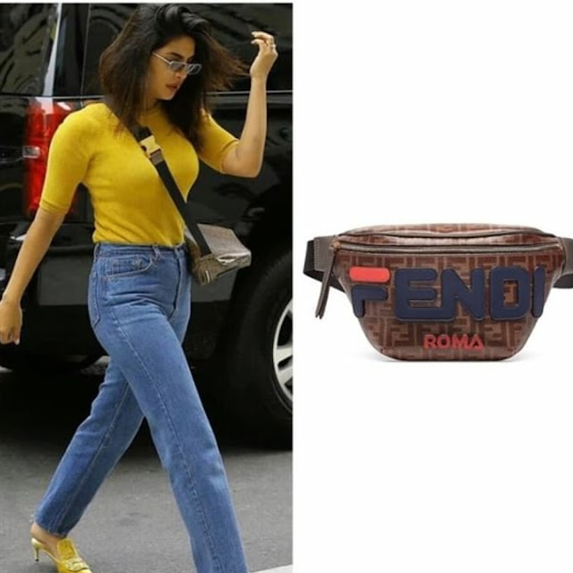 Priyanka Chopra Carrying a Fendi Bag
