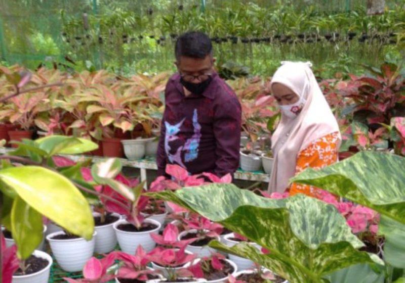 Kadisbudpar Berharap, dengan Digelarnya Batam Flower Festifal 2020 Dapat Tingkatkan Ekonomi Masyarakat