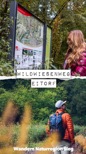 Wildwiesenweg – Eitorf | Wandern in der Naturregion-Sieg | Erlebniswege Sieg 22