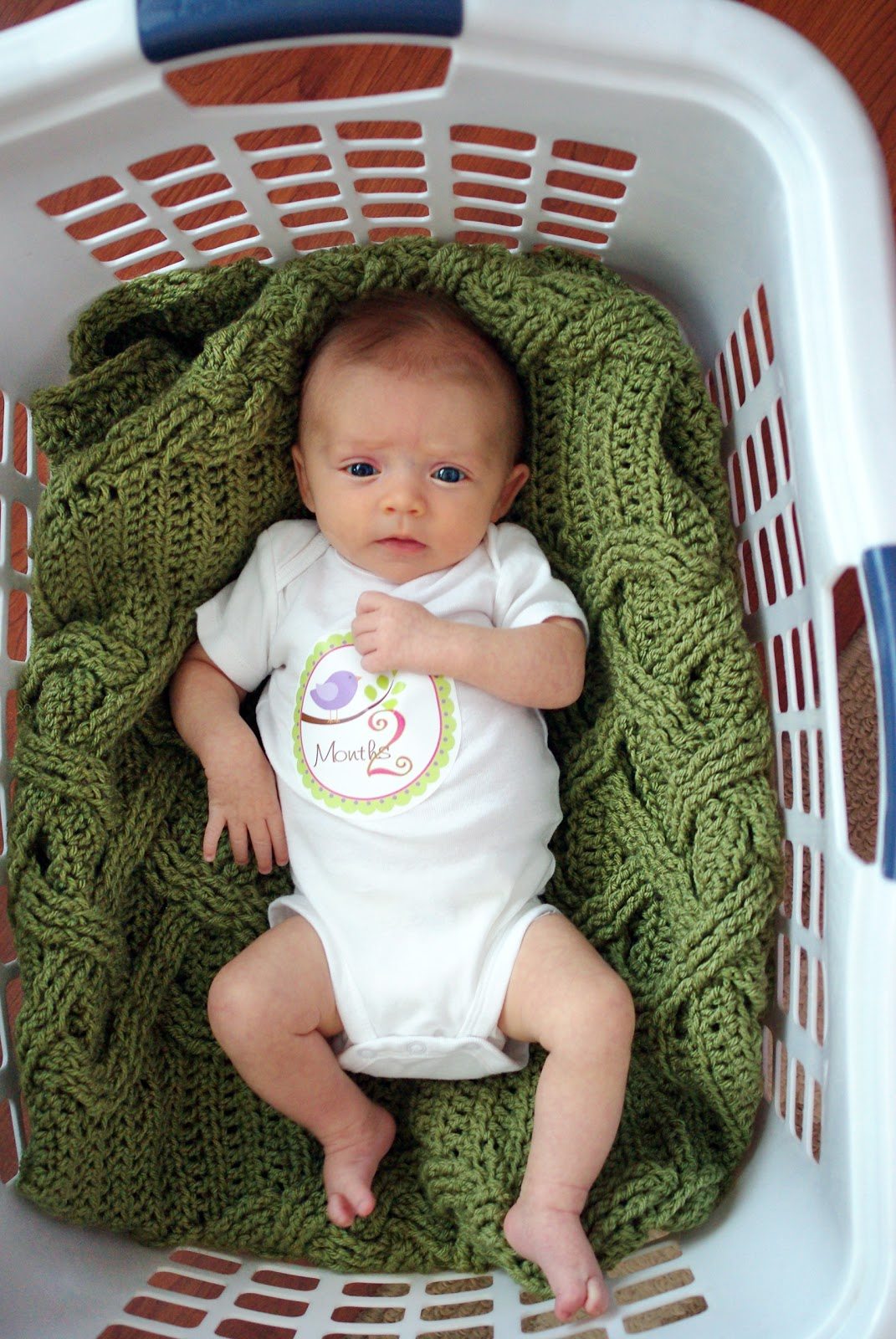 deb14937d5d5f Amanda s Life Commentary  2 Months Old!