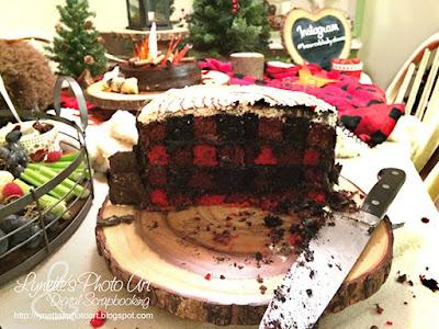 Wilton Checkerboard Cake Set Review