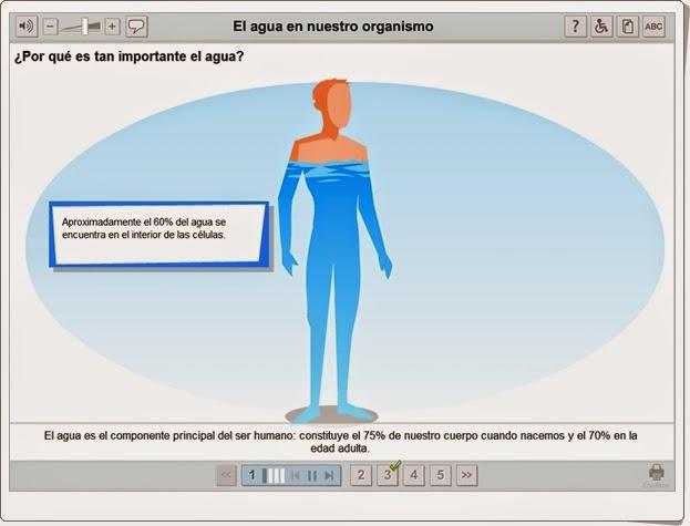 """""""El agua en nuestro organismo"""" (Aplicación interactiva de Ciencias Naturales de Secundaria)"""