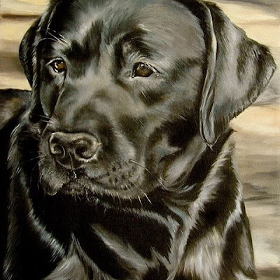 """Genny"" dog portrait by Pia Ledy"