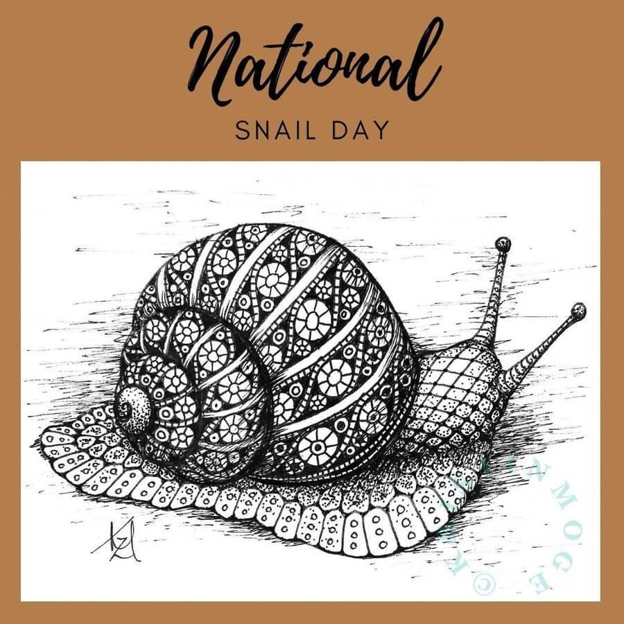 11-Snail-Kristin-Moger-www-designstack-co