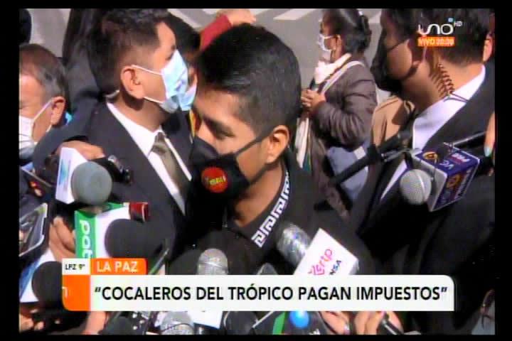 Según el MAS cocaleros no pagan impuestos porque la coca ha sido declarada patrimonio cultural del país