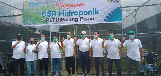 PT PJB UBJ & M PLTU Pulang Pisau Resmikan CSR Hidroponik di Desa Mintin