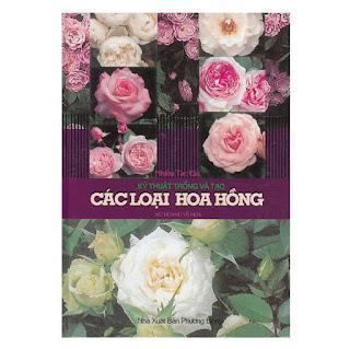 Kỹ Thuật Trồng Và Tạo Các Loại Hoa Hồng ebook PDF-EPUB-AWZ3-PRC-MOBI