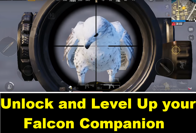 Instantly Get Falcon Companion for Free in PUBG Mobile| 2 Best Ways 1