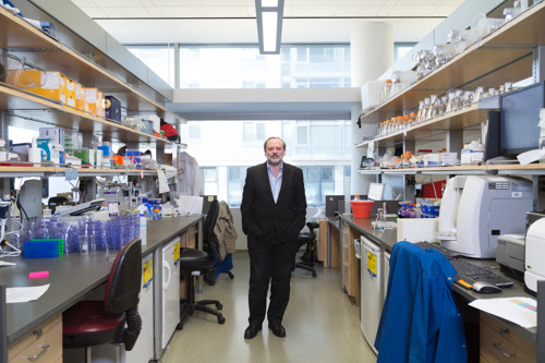 Not Afraid of A Sticky Wicket: Meet Alan Ashworth of UCSF Cancer Center