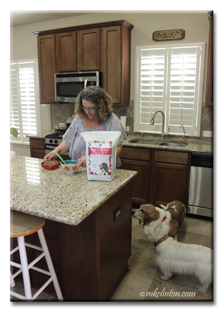 Woman preparing dog's meals as they watch