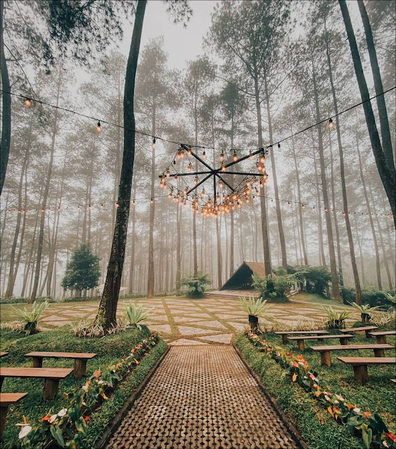 instagramable and has the view of flowers, Orchid Forest Cikole