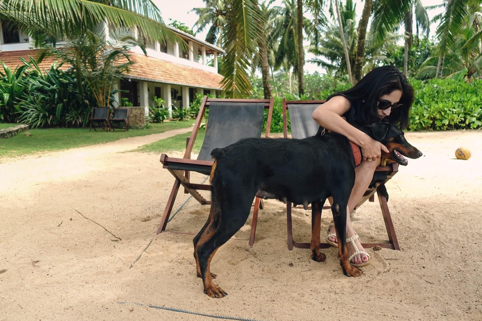 Dog lover Beruwala