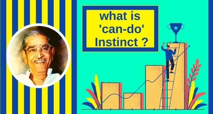 what is 'can-do' Instinct ?