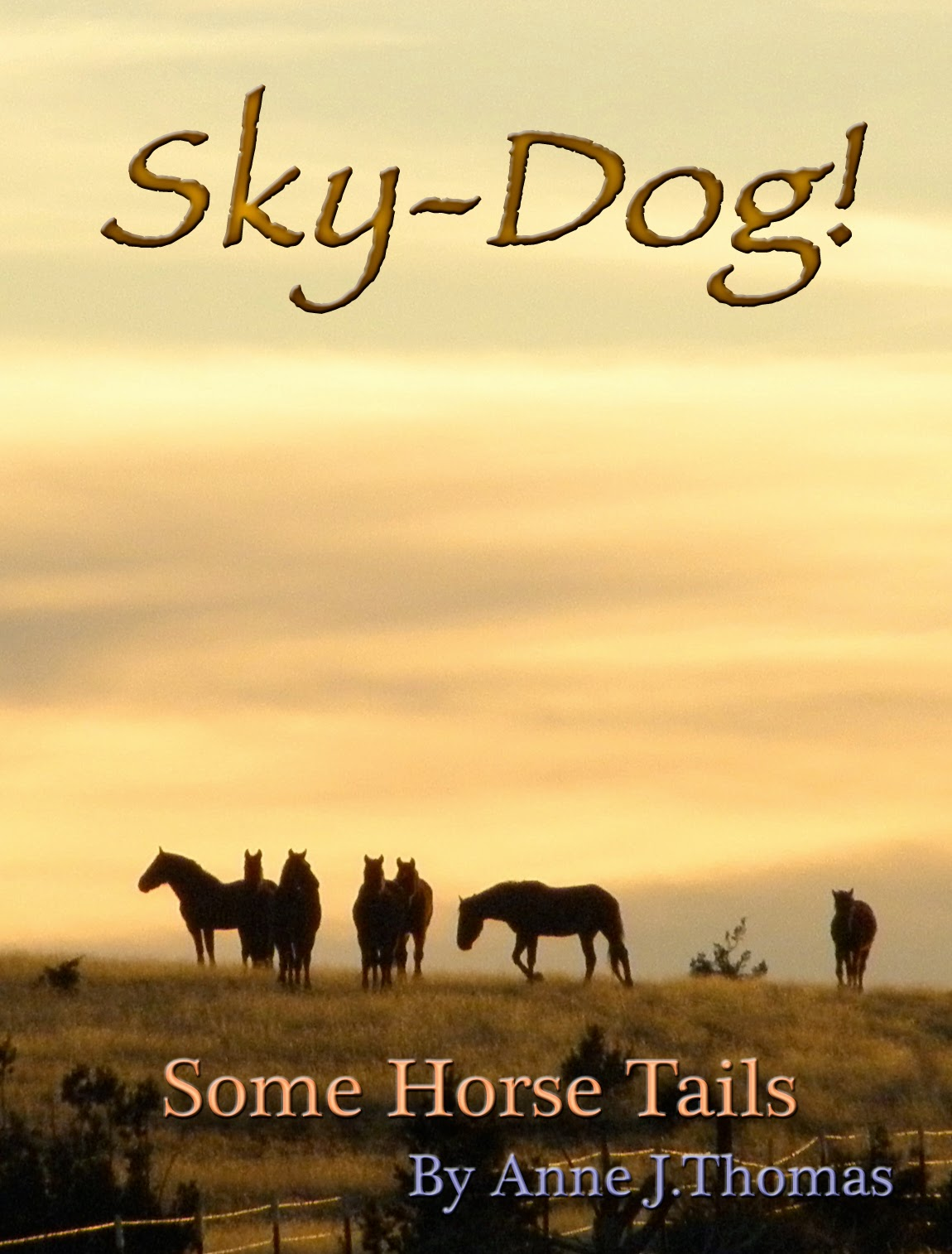 Sky-Dog! ~ Some Horse Tails