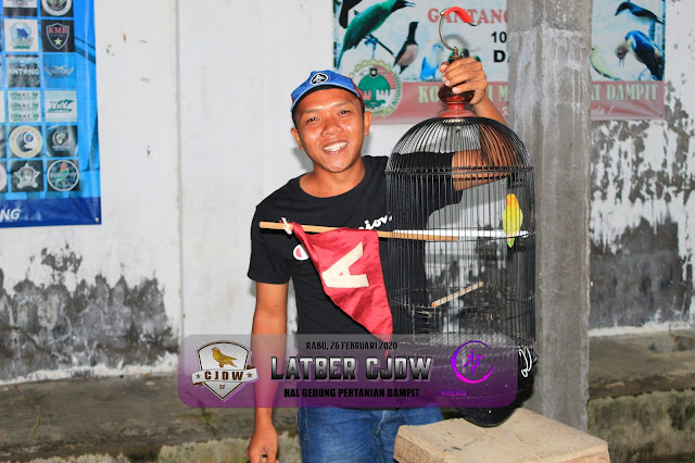 JAWARA LOVEBIRD M1