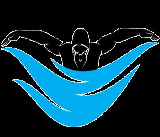 David swims the Cook Strait