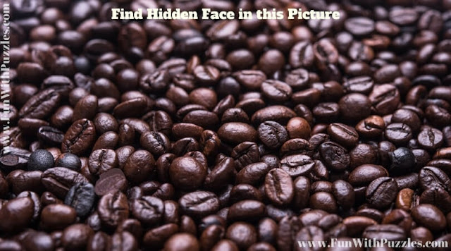 Hidden Face Picture Brain Teaser