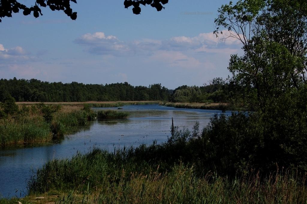 Miłomłyn, śluzy na Kanale Elbląskim