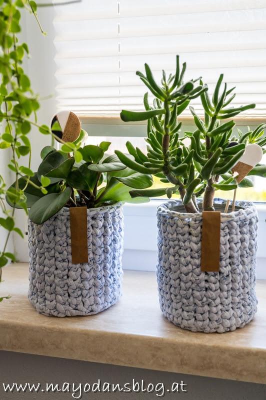 Pflegeleichte Zimmerpflanzen für jedermann & Buchvorstellung