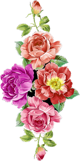 Flower Patch PNG 2403