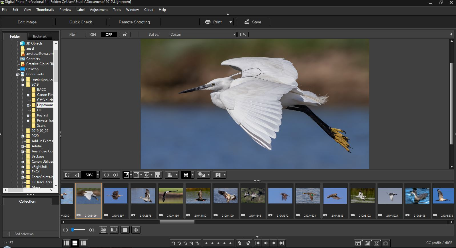 Canon digital professional 4 manual mac os