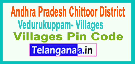 Chittoor District Vedurukuppam Mandal and Villages Pin Codes in Andhra Pradesh State
