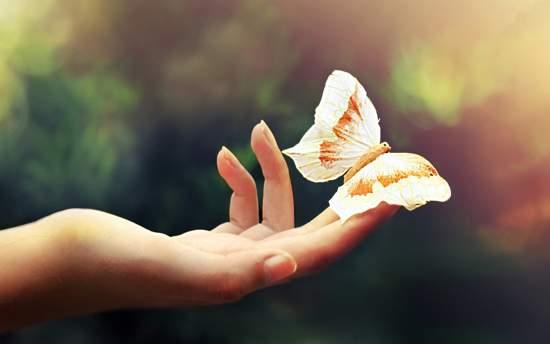 Soñar con mariposas