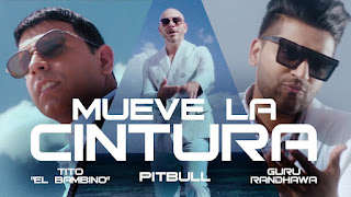 Mueve La Cintura Song Lyrics in Spanish and English
