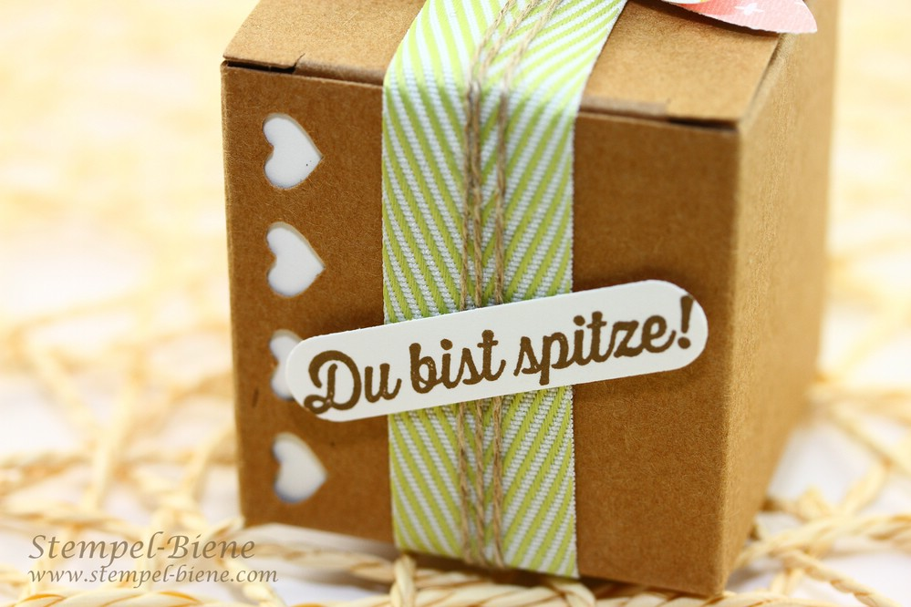 Mini-Geschenkschachteln mit Herzbordüre, Stampin Up Herzbordüre, Stampin Up Minischachteln, Stampin Up Schleifenstanze, Stampin Up Sale a bration 2015, Stampin Up Sammelbestellung, Stempel-Biene