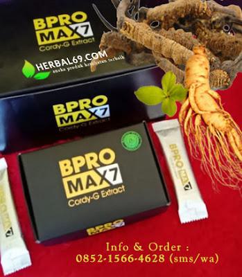 bpro max7 bpromax7, bpro max 7, obat kuat bpromax7, harga bpro max7, herbal bpromax7 bpro max7 herbal,