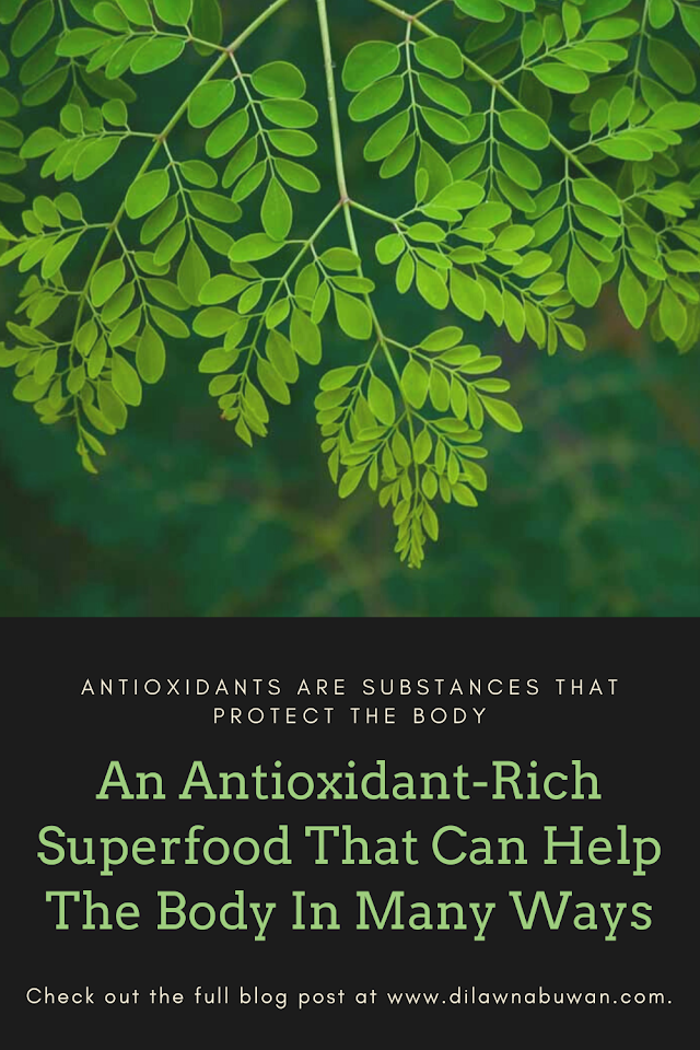 An Antioxidant-Rich Superfood That Can Help The Body In Many Ways