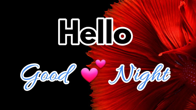 goodnight msg for love