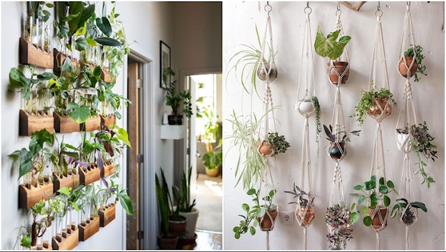 ide living wall