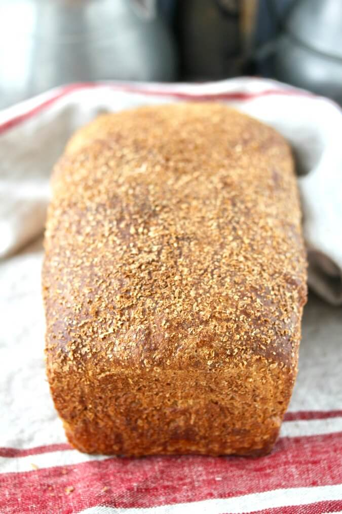 No Knead Light Wheat bran-encrusted Sandwich Bread