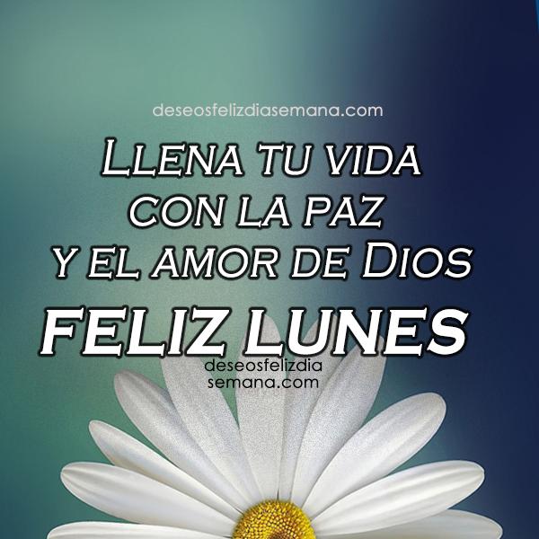 bonita imagen con flor feliz dia frases cristianas amor y paz de Dios por mery bracho