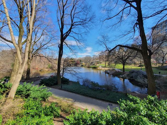 O que fazer no Central Park