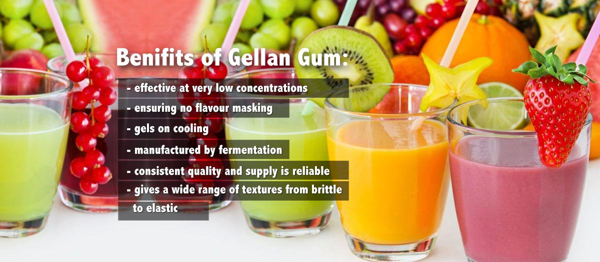 gellan gum solutions and applications