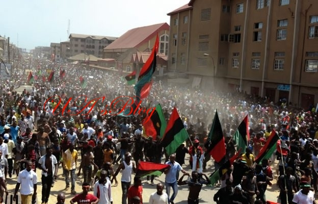 IPOB Prints 40m Ballot Papers For Referendum On Biafra