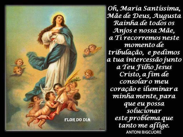 Boa Noite Mae: Mensagem & Mensagem: Mensagem : Maria Santíssima , Mãe De Deus