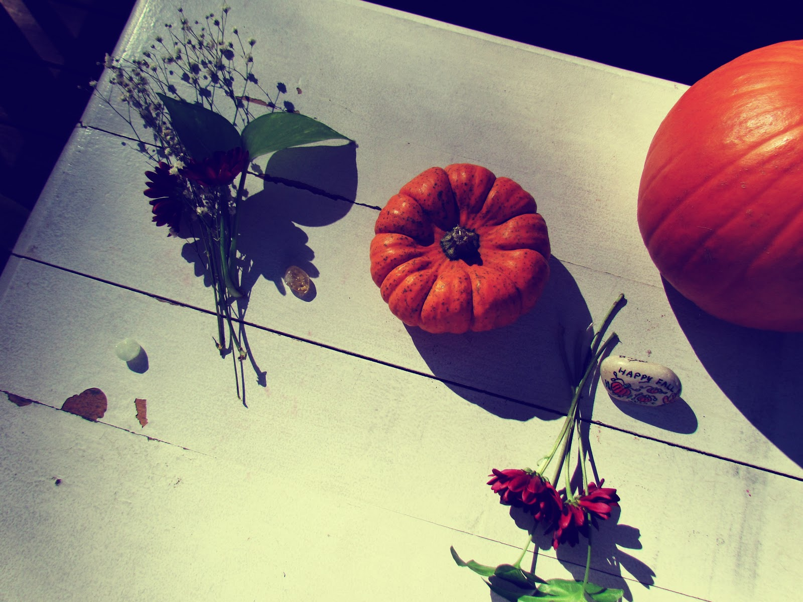 a white, distressed farm table with old-fashioned pumpkins, red carnation flowers, and pumpkin painted rocks