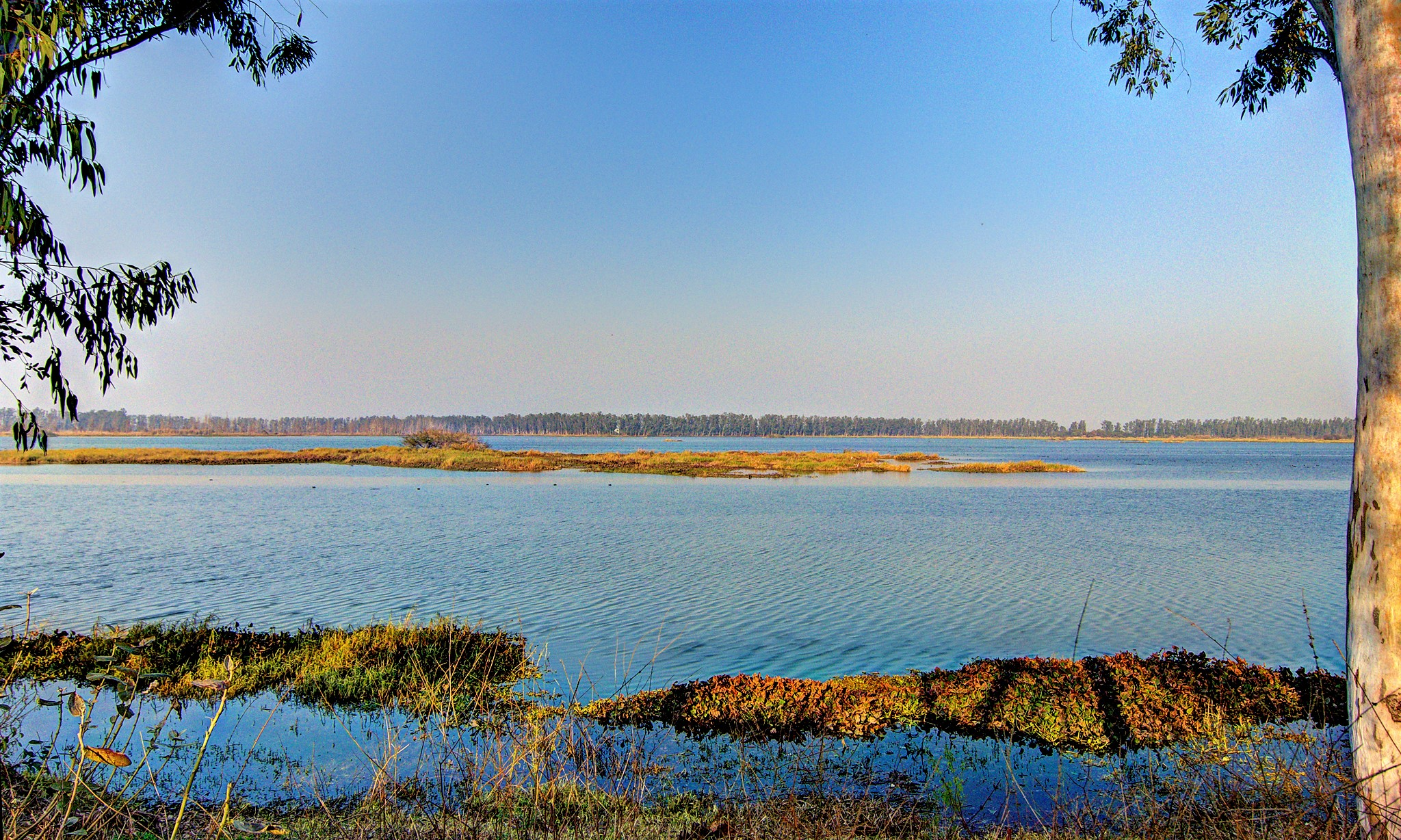 AMAZING PLACES AROUND DELHI - BHINDAWAS LAKE