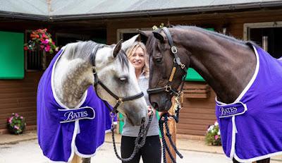 show jumpers, horses, horse riding, bex mason,