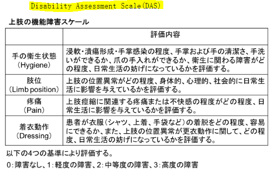 図:disability assessment scale