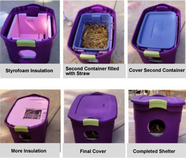 shelters for outdoor cats
